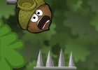 Doctor Acorn - Birdy Level Pack